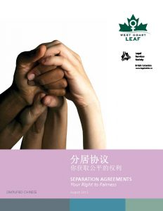 Simplified Chinese edition fo Separation Agreements - cover image