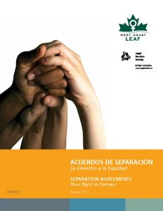 Spanish edition of Separation Agreements - cover image. Click for PDF