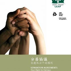 Traditional Chinese edition of Separation Agreements - cover image. Click for PDF.