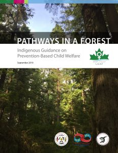 Report cover of Pathways in a Forest