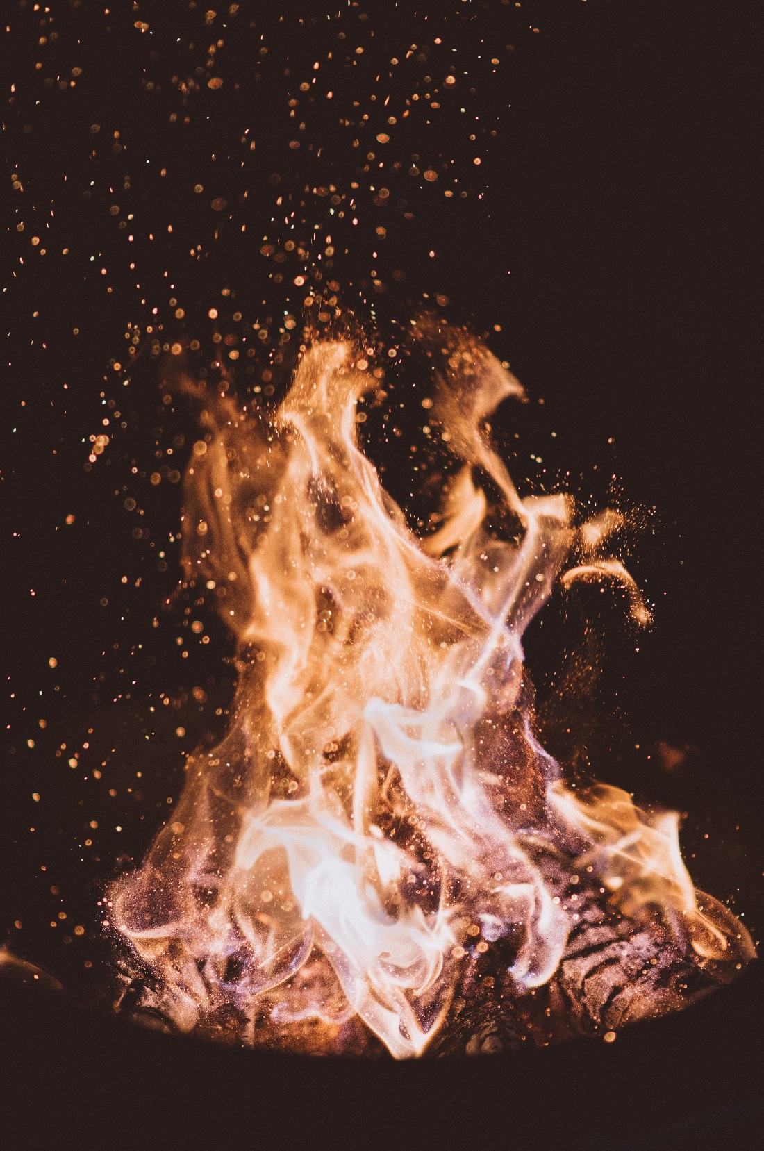 Photo of a camp fire. It is night time and the background is black.
